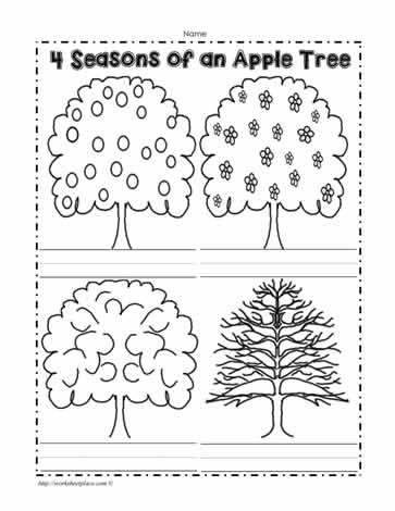 seasons tree worksheet 94177 notefolio. Black Bedroom Furniture Sets. Home Design Ideas