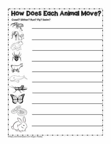 Animals With Fur Feather Scales Or Skin Worksheets