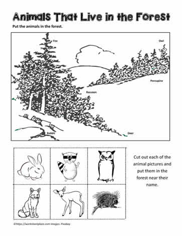 forest animals worksheets. Black Bedroom Furniture Sets. Home Design Ideas