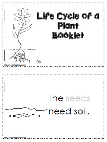 life cycle of a plant worksheets. Black Bedroom Furniture Sets. Home Design Ideas