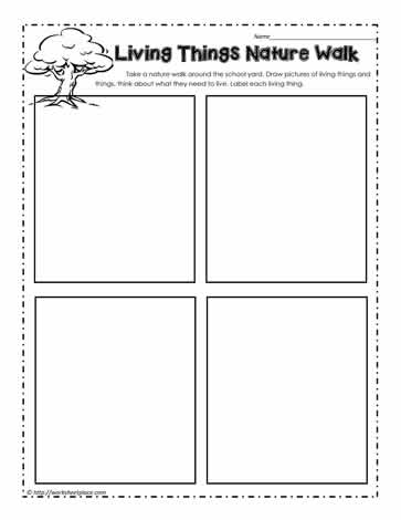 Living and Non Living Things Worksheets