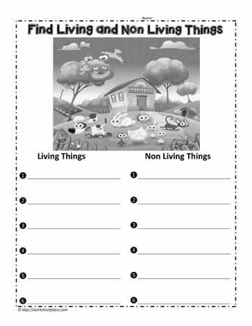 find living things worksheets. Black Bedroom Furniture Sets. Home Design Ideas