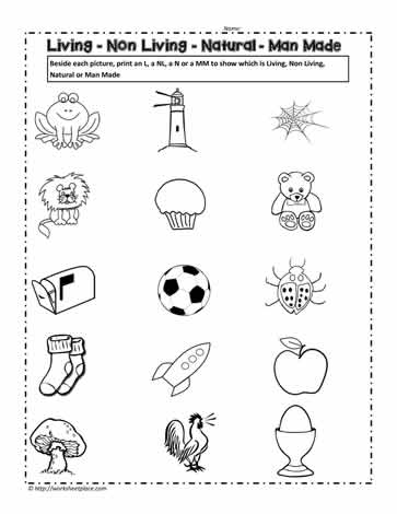 math worksheet : living and non living things worksheets worksheets : Living And Nonliving Things Worksheets For Kindergarten
