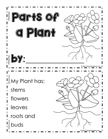 This Is A 5 Page Printable Parts Of Plant Booklet To Show The Stem Leaves Flowers Roots And Buds Kindergarten Grade 1 Science