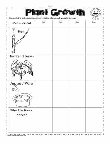 plant growth measurements worksheets. Black Bedroom Furniture Sets. Home Design Ideas