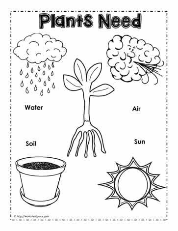 HD wallpapers preschool vegetable worksheets