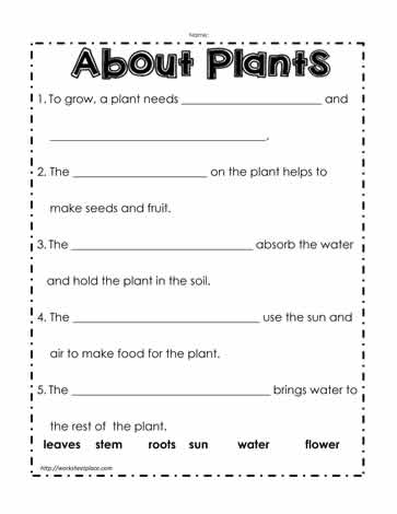 Plant Worksheet Worksheets