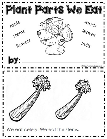 Booklet for Plants we Eat