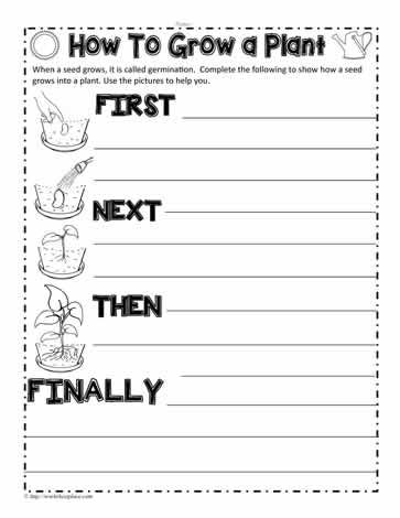 How to Grow a Plant Worksheets