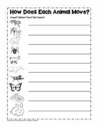 Worksheets Classification Worksheet animal classificationworksheets animals with fur feather scales or skin