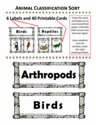 Animal Card Sort Activity
