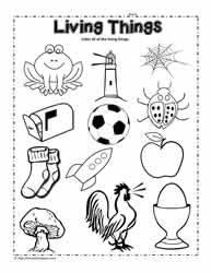 Circle the Living Things Worksheet
