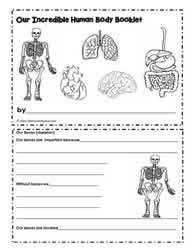 Human body worksheets human body printable booklet ccuart Gallery