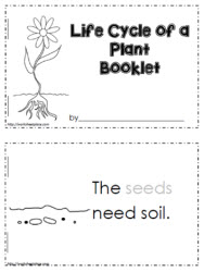 Printables Plant Life Cycle Worksheet parts of a plant worksheetsworksheets life cycle plant