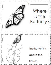 Where is the Butterfly