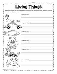 math worksheet : living and non living things worksheetsworksheets : Living And Nonliving Things Worksheets For Kindergarten