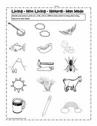 Worksheets Singapore School Classification Of Living Things Worksheet living and non things worksheetsworksheets worksheet