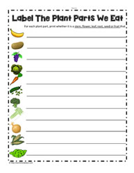 Parts of a Plant Worksheets moreover Parts of a Plant   Kindergarten Science Printables   SoD in addition Plants Worksheets Dandelion Life Cycle Plant Cell Worksheet Plants besides Parts of a Plant Worksheets likewise 40 FREE ESL plant worksheets likewise plant parts worksheet   Woo  Jr  Kids Activities also Kids  parts of a plant worksheet  Diagram Plant Parts Unique A together with What Do Plants Need To Grow Worksheet Plant Worksheets For Science moreover  as well Which parts of the plant do we eat    ingridscience ca together with Parts of a Flower Clipart   Home Clipart further Kindergarten Plants Worksheet Related Post Science Plants Worksheets besides 5th grade Science Worksheets  Parts of a flower   Greats moreover Plants Primary Teaching Resources and Printables   SparkleBox further PARTS OF A PLANT   ESL worksheet by nuriabad likewise Flowery Plants – Free Plant Worksheet for Middle – JumpStart. on parts of a plant worksheet