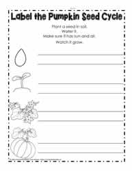 Label the Pumpkin Seed Cycle