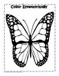 Color the Butterfly Symmetrically