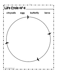 Worksheets Butterfly Life Cycle Worksheet life cycle of a butterfly worksheetsworksheets cycle