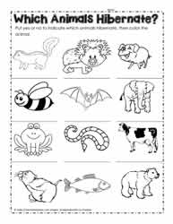 Coloring Pages Picture: Animals Hibernating Coloring Pages | 250x193
